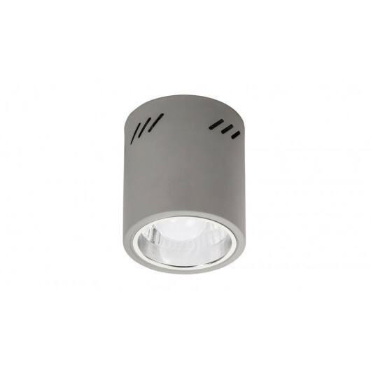 Rábalux Donald 2485 stropna svetilka  siva   kovinski   E27 1x MAX 60W   IP20